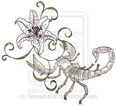 zodiac tattoos and designs page 40