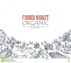 farmer and fresh vegetables sketch vector stock vector image