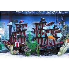 12 best fish tank ideas images on aquarium fish