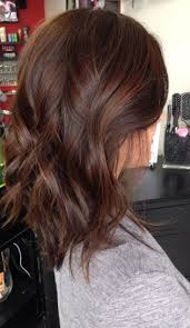 Red Hair Color With Highlights Pictures Best 25 Mahogany Brown Hair Ideas On Pinterest Mahogany Brown