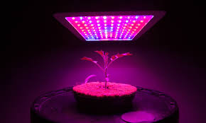 cheap grow lights for weed 10 best led grow lights for growing weed green rush daily