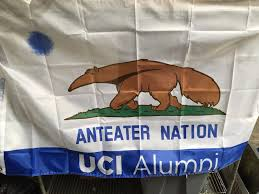 California Flag Bear Uci Alumni California Anteater Flag Bear Flag Museum