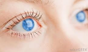 What Can Cause Temporary Blindness Temporary Blindness Cases Tied To Smartphone Use In Dark U2013 Best On