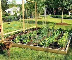 Medium Garden Ideas Tiered Garden Ideas Tiered Garden Beds Medium Size Of Brilliant