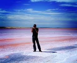 Pink Lake Pretty Pink Lakes Across The Globe 54 Pics