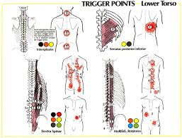stretches for lower back scoliosis in lower back