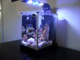 Fluval Sea Marine And Reef Led Strip Lights by 2g Fluval Spec Pico Pico Reefs Nano Reef Com Community