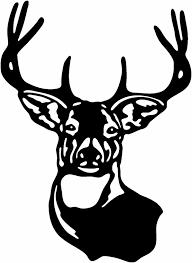 deer head clipart many interesting cliparts