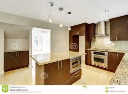 modern brown kitchen cabinet ideas for brown kitchen cabinet