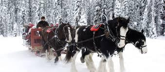winter sleigh rides around the seacoast seacoast