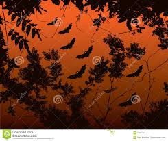 halloween bats background stock image image 5042791 halloween