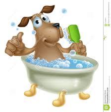 dog grooming bath cartoon stock vector image 41478551