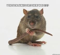 Rat Meme - rpg rat memes quickmeme