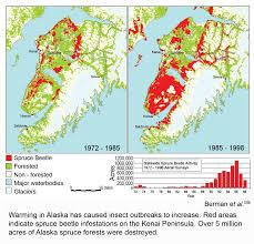 Kenai Alaska Map by Alaska Spruce Beetle Infestation Kenai Peninsula 1972 To 1998