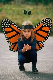 best 25 kids butterfly costume ideas on pinterest butterfly