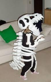 Boys Skeleton Halloween Costume 10 Rex Costume Ideas Rex Halloween