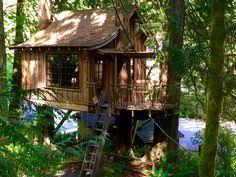 Treehouse Point Wa - treehouse point fall city washington http www treehousepoint