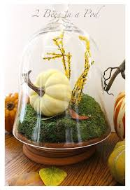 diy fall terrarium hometalk