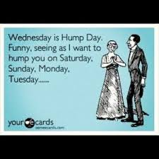Hump Day Meme Dirty - best quotes to live by not in the market for a break up at