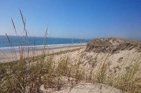 chambres d hotes de charme aquitaine chambres d hôtes la pomme de pin proches des plages à lacanau en