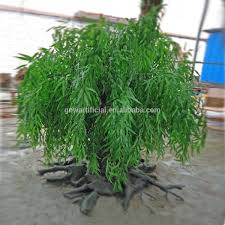 Curly Willow Branches Gnw Btr016 Artificial Weeping Plastic Green Leaves Tree With Curly