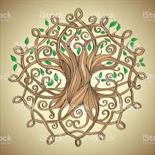 amazing tree of life in the celtic pattern with leaves stock