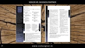 Hr Business Partner Resume Sample by Get Noticed Get Hired Order A Stunning Resume Today