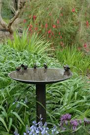 try adding a bird feeder to your backyard to create a serene oasis