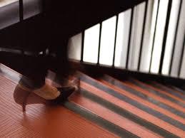 non slip safety stair tread self adhesive anti slip tape anti