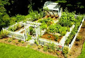 small kitchen garden ideas vegetable garden plans for small spaces lawn yard landscaping