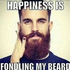 Memes About Beards - 19 best beard memes images on pinterest beards beard style and
