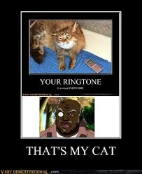 Uncle Ruckus Memes - that s my cat very demotivational demotivational posters very