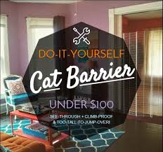 Interior Pet Door For Cats The Lovely Side Diy Cat Barrier For Under 100 See Through