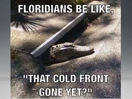 Florida Winter Meme - is the cold front gone yet florida freightcenter florida
