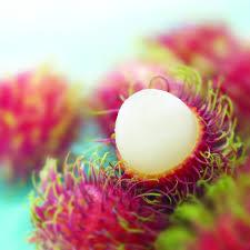 fruit similar to lychee the health benefits of rambutan 0medz0