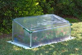 Palram Polycarbonate Greenhouse Poly Tex Palram Cold Frame Greenhouse Hg3301 On Sale Now