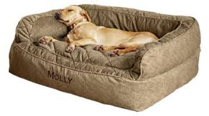 dog nesting bed the benefits of an orvis dog bed orvis