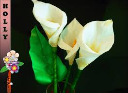 Calla Flower How To Make Paper Flowers Calla Lily Easy And Quick Paper