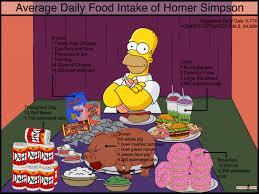 average daily food intake of homer visual ly