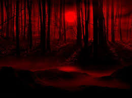 halloween dark forest background 600x600 red forest night related