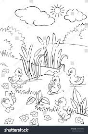 coloring pages five little cute ducklings stock vector 394950034