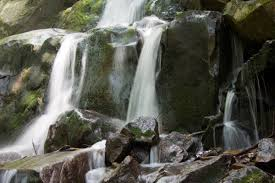 Tennessee waterfalls images 20 scenic tennessee trails hikes and waterfalls you need to jpg