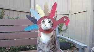 thanksgiving turkey gif wifflegif