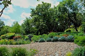 delightful garden tour on a challenging slope u2026 diana u0027s designs