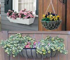 Flower Boxes That Thrive In by How To Plant Window Boxes U0026 Baskets Hooksandlattice Com