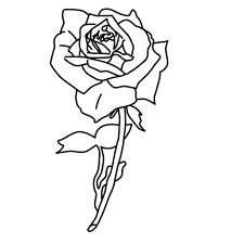 great rose coloring pages perfect coloring pag 3644 unknown