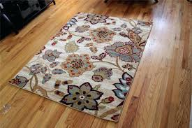 Sams Outdoor Rugs New Sams Outdoor Rugs Startupinpa