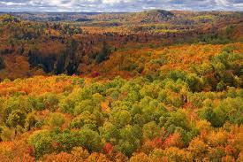 10 tips shooting autumn foliage nikon