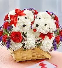 dog flower arrangement 7 delightful flower arrangements for the 7 types of dog