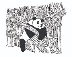 free panda coloring pages for adults colouring animals